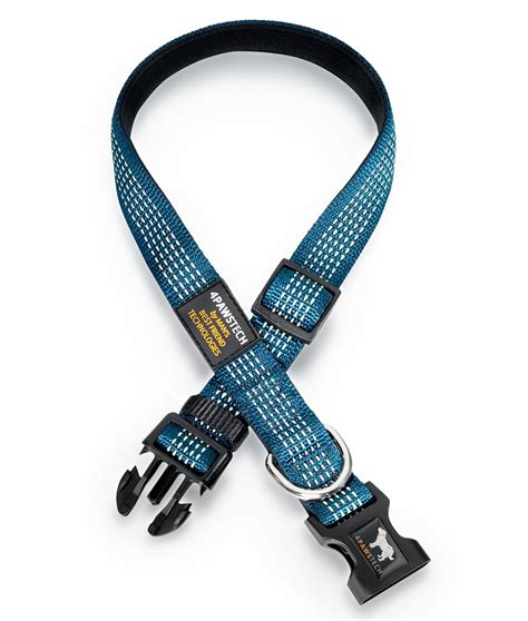 teal collar teal blue collar with reflective stitching d ring