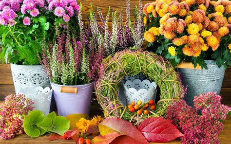 Blumensträuße Bilder by Blumendeko