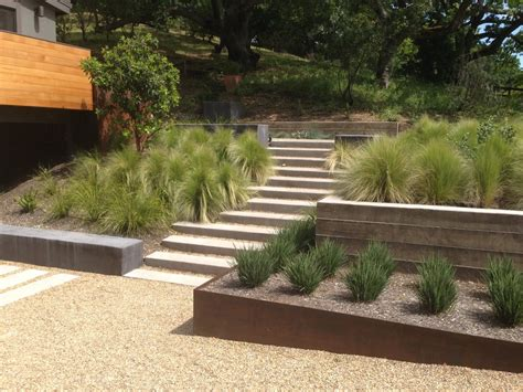 concrete and landscaping landscape contemporary with
