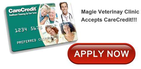 care credit for dogs care credit magie vet clinic