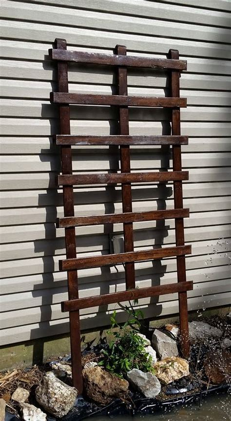 climbing plants on trellis easy diy trellis for climbing plants and vines