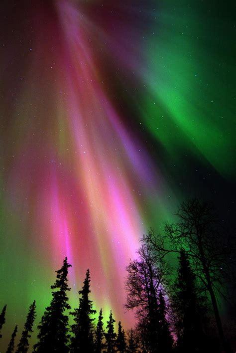Aurora borealis richard s meanderings