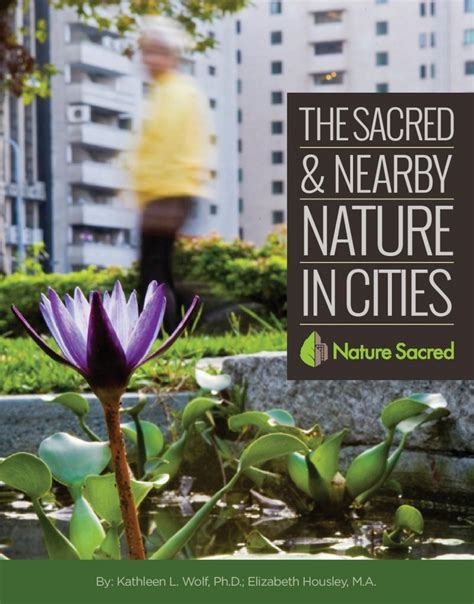 reclaiming banished voices stories on the road to compassion books reclaim civic sacred space nature sacred