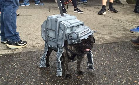 wars pugs wars pug jpegy what the was meant for
