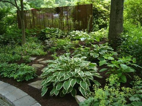 Hosta Garden Ideas Shade Garden Hosta Astilbe Epimedium Ferns S Mantle And Other Perennial Flowers
