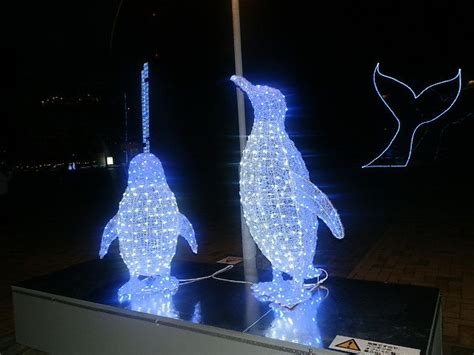 59 best penguin christmas lights images on pinterest