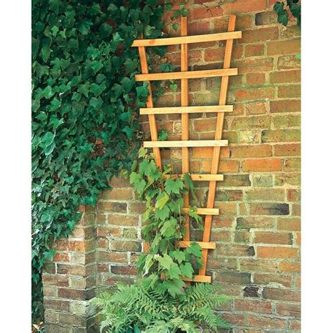 Small Wall Trellis 17 Best Images About Easy Trellis On Wall