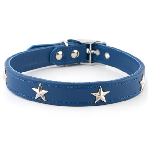 studded leather collars studded leather collar by petiquette collars notonthehighstreet