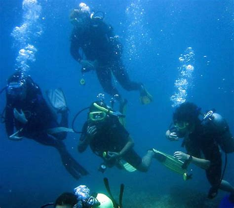 belize dive belize scuba diving and snorkeling tours in ambergris caye