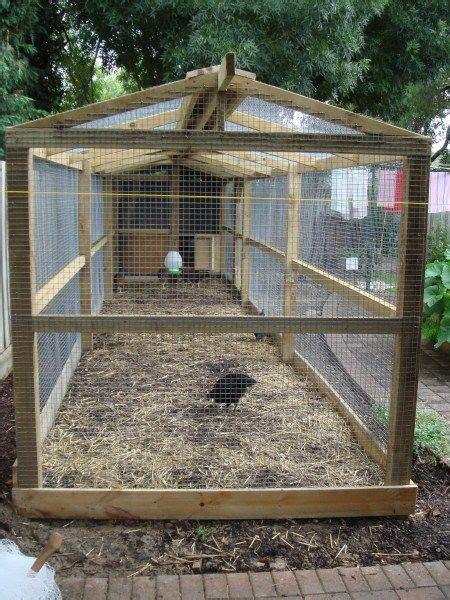 backyard chickens melbourne best 25 chicken runs ideas on pinterest