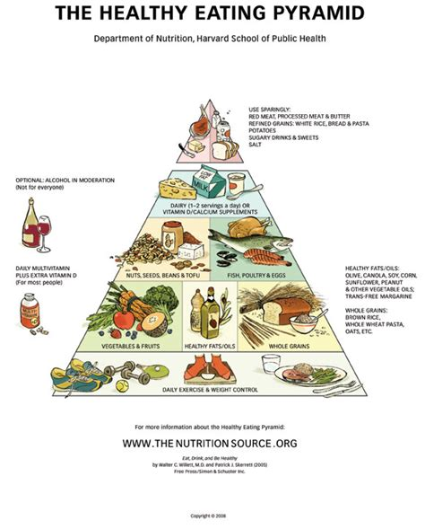 better food pyramid practical biology science for everyone the best dietary