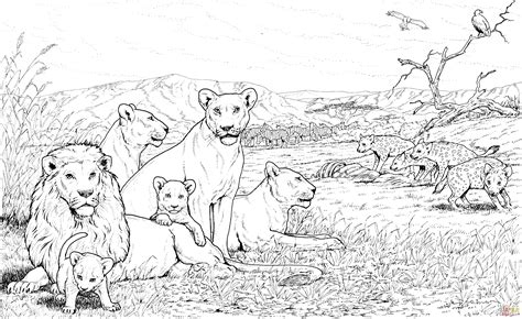 Lion Pride Coloring Pages | lion pride and hyenas coloring page free printable