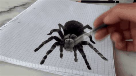 Drawing Gif by Drawing Spider Gif Find On Giphy