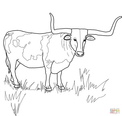 texas longhorn skull coloring coloring pages