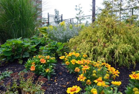 garden fall planting favorite fall planting combinations garden pics and tips