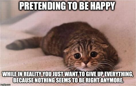 Be Happy Memes - sad cat imgflip