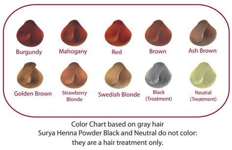 surya hair color total back system momentum98