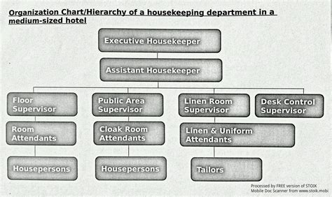 layout of housekeeping department in large hotel housekeeping department organizational chart large hotel