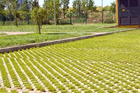 Barriera Fonoassorbente Vegetale by Prati Armati E Parcheggi Verdi Perliparking