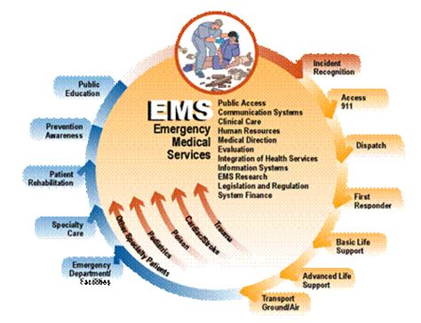 Lu Emergency Best ems gov what is ems