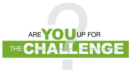 the challenge by vi 90 day challenge review randy disert