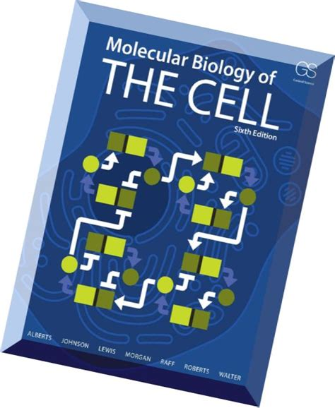 Molecular Biology Of The Cell molecular biology of the cell 6 edition pdf