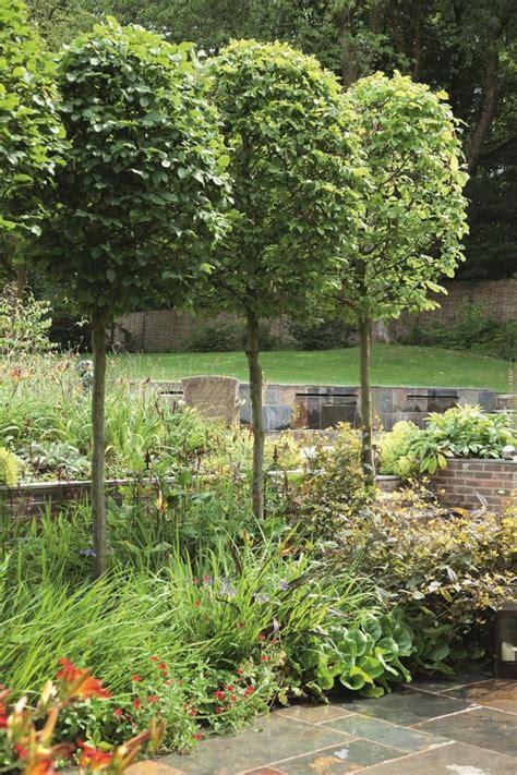 images  fix  wet yard  pinterest gardens