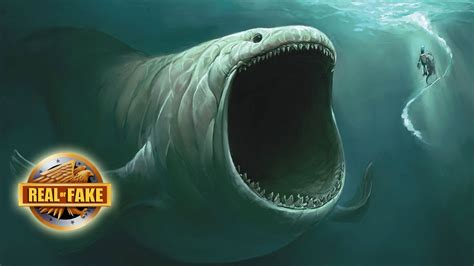 Is A Real Beast by The Mysterious Bloop Creature Real Or