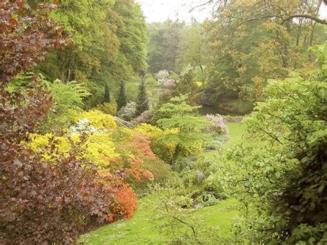 Britzer Garten Rauchen by Pin Fr 252 Hling Im Garten On