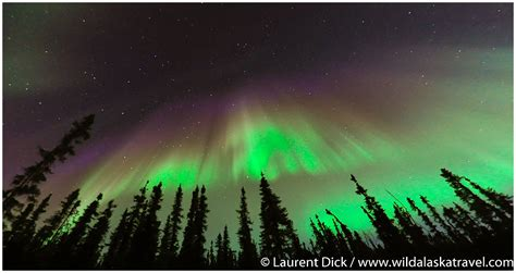 when to go to alaska for northern lights amazing alaska northern lights tour alaska travel