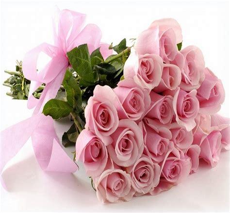 imagenes de rosas rosas hermosas imagenes de flores hermosas para regalar a mi amorcito