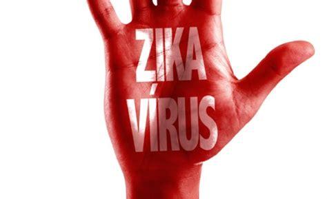 preguntas y respuestas sobre el zika 7 preguntas y respuestas que debes saber sobre el zika