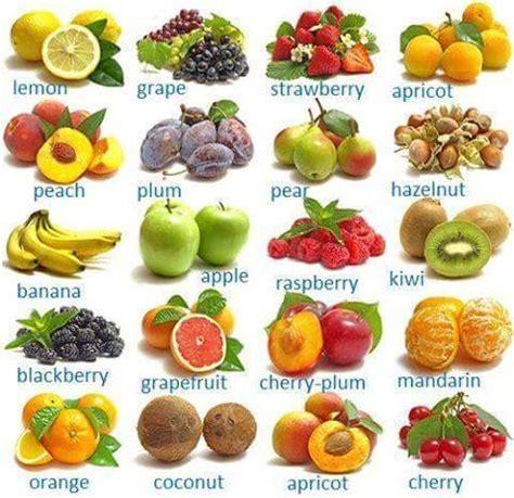 imagenes en ingles frutas vocabulario espec 237 fico frutas eingleses