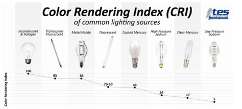 color rendering color rendering index across a spectrum of options tes