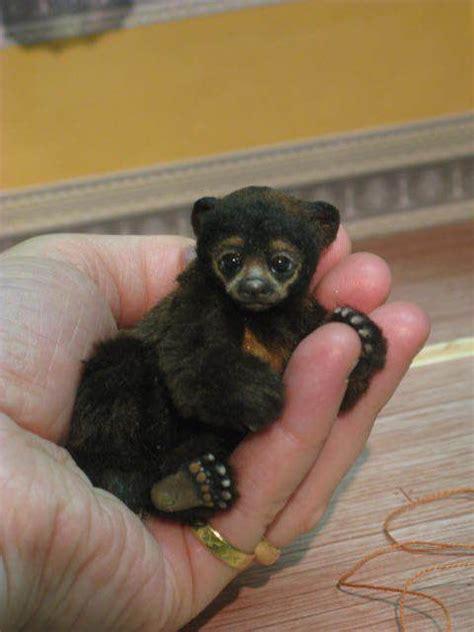 Pet Miniatur miniature animals as pets