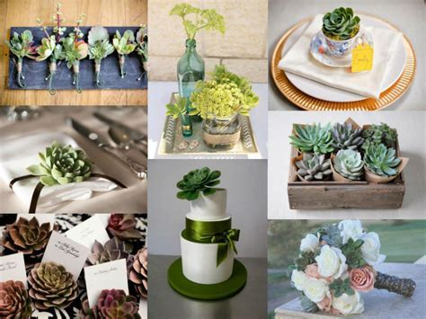 10 Creative Ways to Use Succulents in Your Wedding   World