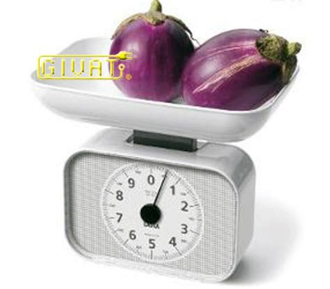 bilance pesa alimenti bilancia pesa alimenti