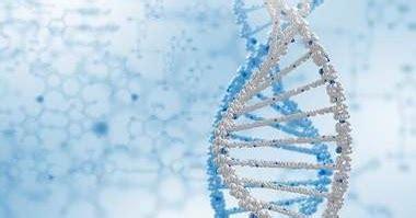 gen dna  kromosom biologi kelas xii biologine pak mycunk