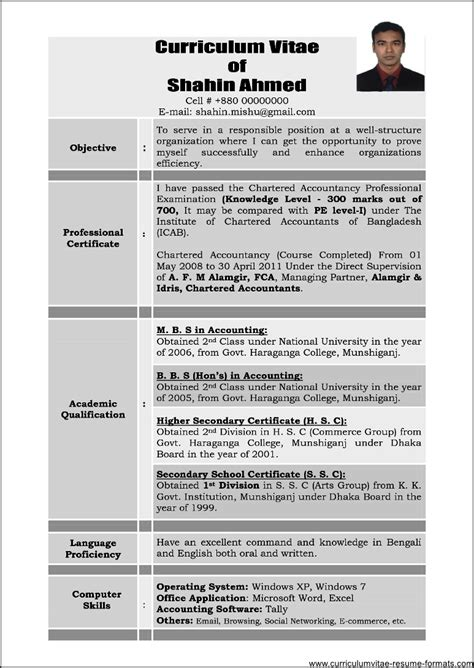 it professional resume sample resume sample for an it