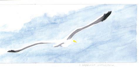 commento il gabbiano jonathan livingston chiaraboreart chiara borella artblog il gabbiano