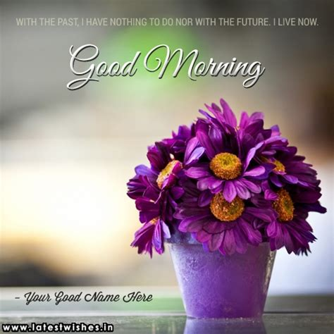 good morning  flowers quotes  pix