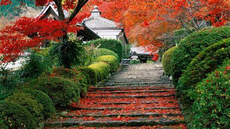 autumn garden japan garden kyoto autumn fall wallpaper 1920x1080