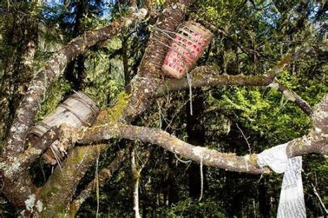 tree tradition most funeral traditions in the world the highlanders