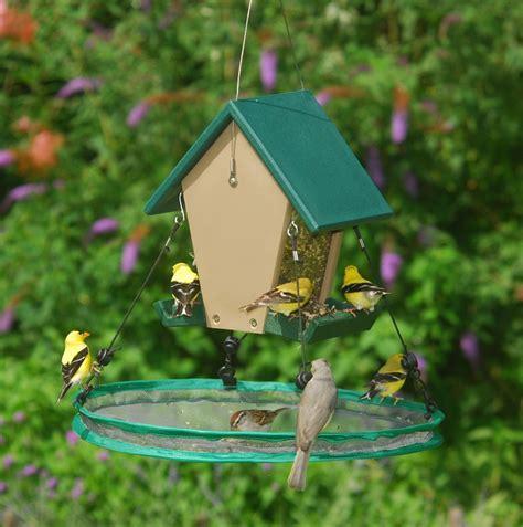 seed hoop bird seed catcher
