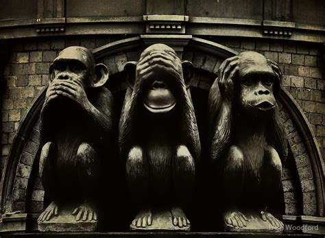 quot three wise monkeys quot by trish woodford redbubble
