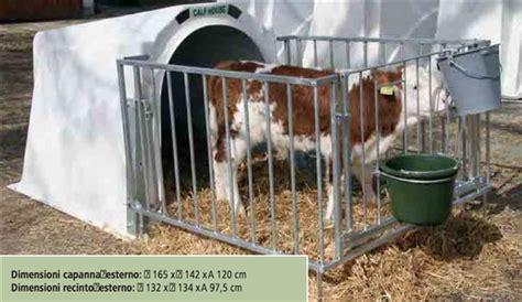 gabbie per vitelli capanne per vitelli calf house klima plus con recinzione