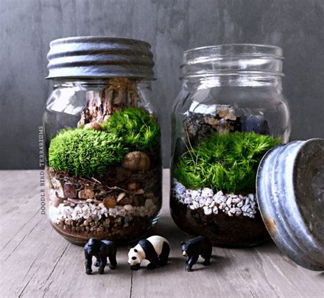 565 best images about terrariums and miniature gardening on pinterest