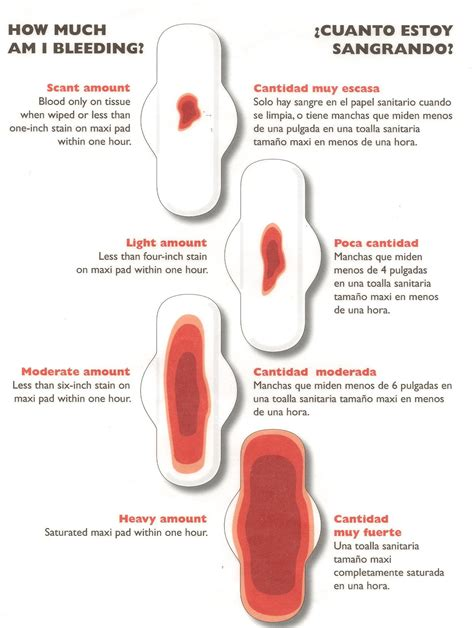 Spotting Vs Light Period by Guide To Bleeding If You Need To Call Us To Talk About