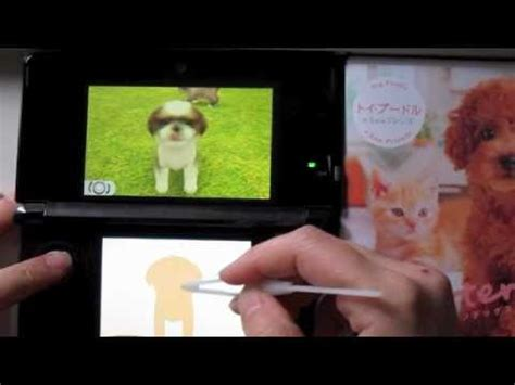 nintendogs shih tzu 3ds nintendogs cats shih tzu