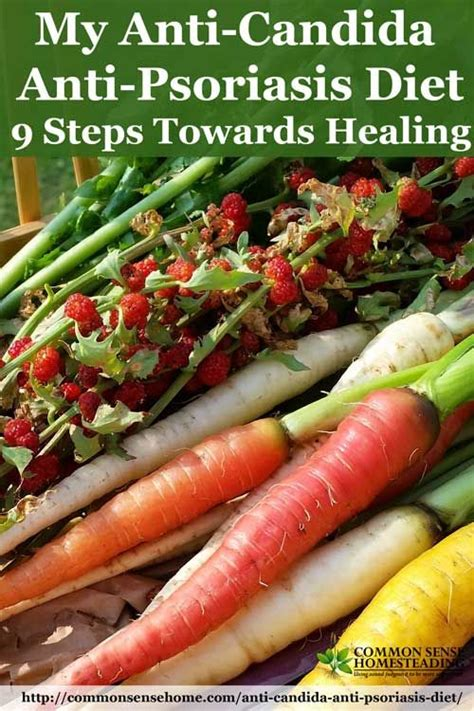 Psoriasis Detox Diet by Best 20 Psoriasis Diet Ideas On Inflammatory